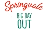 Springvale Big Day Out