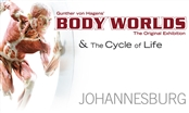BODY WORLDS &amp; The Cycle of Life - JHB