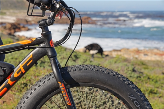 E-Bike Cape Peninsula Tour