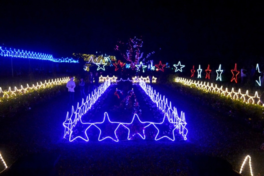 Durban Botanic Gardens Trail of Lights 2020