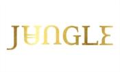 Jungle live in Cape Town